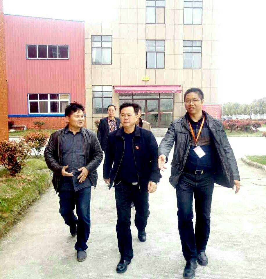胡江萍到丰城黑五类食品有限公司调研
